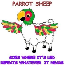 Parrot Sheep